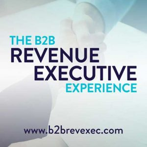 The B2B Revenue Executive Experience